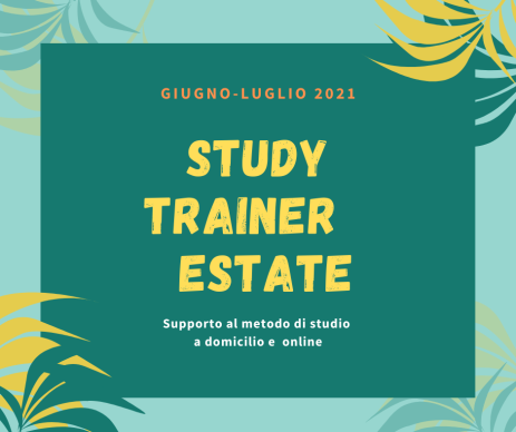 STUDY TRAINER ESTATE 2021